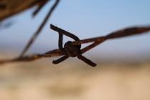 marco_di_pasquale-20_web